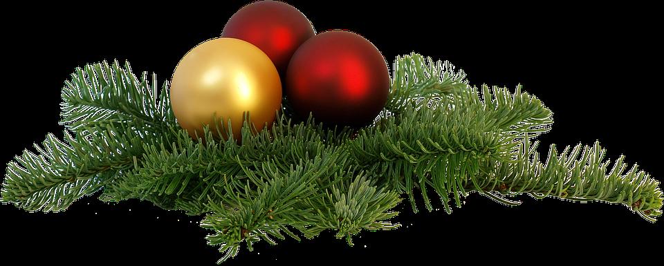 christmas-branch