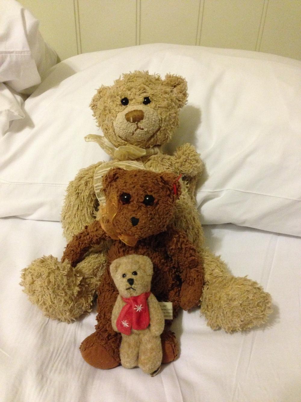 The bears.JPG