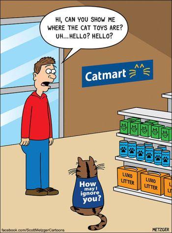 catmart1